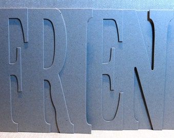 FRIEND Chipboard Album 5.5 high x 12 inches long