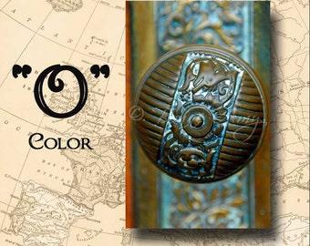 Letter O Alphabet Photography Color 4 x 6 Photo Letter Unframed