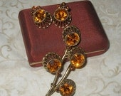 25% OFF SALE Vintage Brooch and earring set silvertone and amber