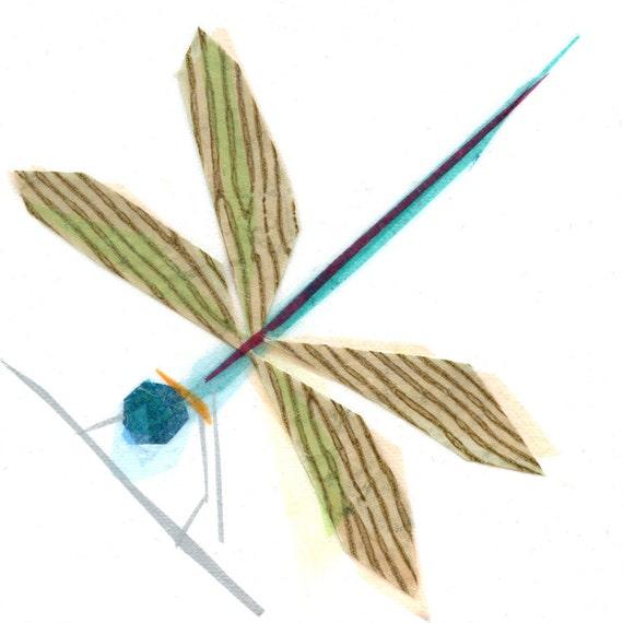 Lula B. Dragonfly - Insect Art Print