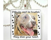You can't trust pitbulls, they steal your heart  Glass Tile Pendant