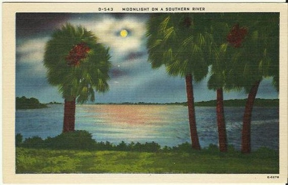 Vintage Linen Postcard - Night Scene - Moonlight on a Southern River  - 1940s