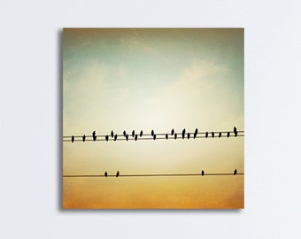 """Bird on Wire Canvas Photography - wall art gold beige brown neutral print olive green nature modern telephone wires photograph, """"In Tune"""""""