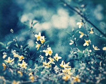 """Blue, Yellow Nature Photography, navy dark blue flower branches floral print large photograph modern wall branch picture, """"Soulful Whispers"""""""