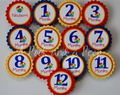 Primary Color Beach Ball 1st Year Photo Tag Banner Display First Birthday Party Decoration
