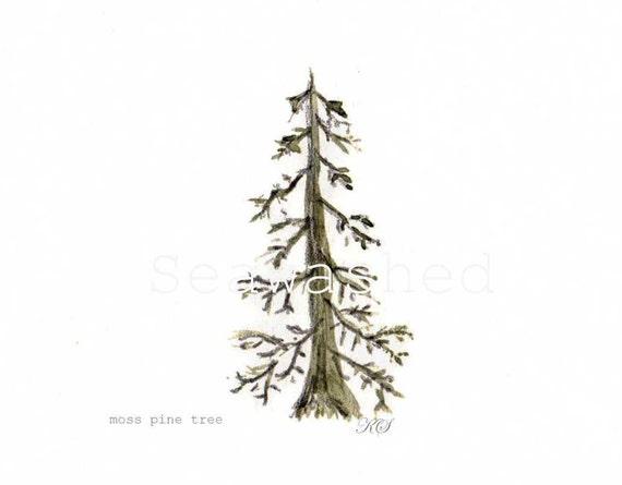 PINE TREE Watercolor Print Nordic Coastal Pine Beach Seawashed Botanical Woodland Christmas Home Decor