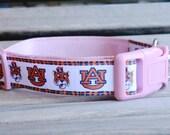 Auburn Dog Collar in light pink