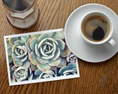 Assorted Succulent Cards-Set of 5 Photo Notecard, Blank Greeting Card, Photo Greeting Card, Floral Photo Notecard, Stationery Set