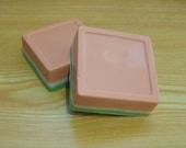 Watermelon Goat's Milk Soap