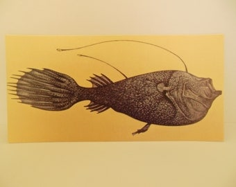 Vintage Fish Flash Ccard Color Decor Paper Ephhemera Deep Sea Anglerfish 1960's (item 12)