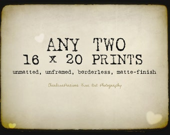 """10% OFF YOUR ORDER of any two 16 x 20"""" prints!"""