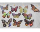 Sparkling orange,yellow iridescent resin butterflies