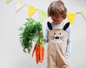 Easter Bunny Rabbit dungaree overalls for children.