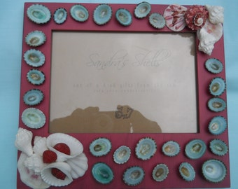cranberry frame with limpets and assorted seashells BEACH NAUTICAL DECOR