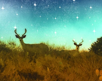 Deer Photography, Antler Art Print, Starry Sky Photography, Antler Fine Art Nature Photography,