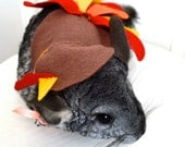 Thanksgiving turkey costume. Chinchilla / hamster / guinea pig / rabbit pet costumes by la Marmota Café.