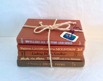 Shabby Book Bundle - Brown Vintage Books - Instant Library