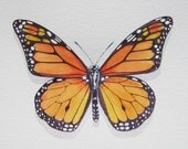 Monarch Butterfly Watercolor Print
