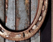 Wall Art, Reclaimed Horseshoe / horse shoe, framed and mounted on steel bars used to make horseshoes, Wall Hanging, Wall Decor