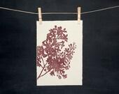 Lilacs - Hand Printed Linocut - PRINT