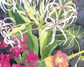 Tropical Flowers and Flora Watercolor, 12 Pack Fine Art Blank Greeting Cards, Assorted Lot