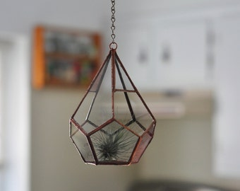 Hanging Teardrop Glass Terrarium -- for air plant terrarium or small succulent -- stained glass -- terrarium supplies -- eco friendly