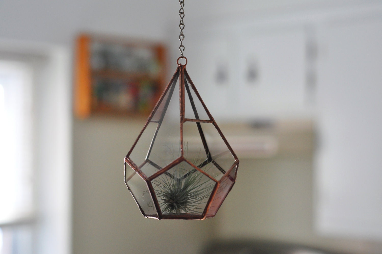 hanging teardrop glass terrarium for air plant terrarium or. Black Bedroom Furniture Sets. Home Design Ideas