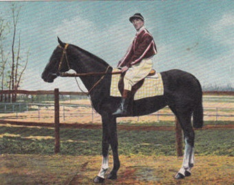 antique postcard of a horse with a jockey, from the 1910's