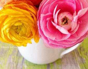 floral, Spring, flowers, ranunculus, fine art photography
