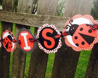 Ladybug Birthday Banner - custom made