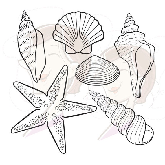 Seashell Line Art additionally Rhomboid 38619 as well Quad9 43200 besides 74036 man costume as well Con bre Dessin. on cl coloring page
