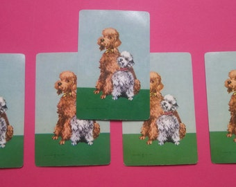 5  vintage playing cards poodles (2-145)
