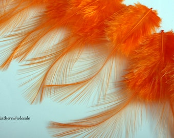 Orange Feathers Bright Orange Feather Orange Craft Feathers Bright Orange Feather Craft Supplies Rooster Coq Saddle Feathers Delicate, 12 pc