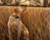 Custom Pet Portraits- 9x12, Full Color Drawings
