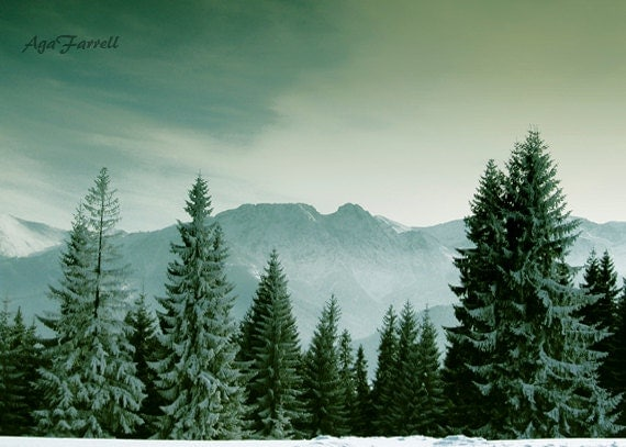 Mountain Photography, Nature Art, Winter Print, Evergreen Pine Trees, Folk Art, Folklore, Forest Photography - Sleeping Knight