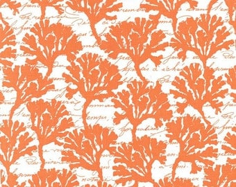 Michael Miller By the Sea Collection Marina in Coral by the Yard