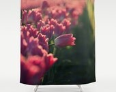 Fabric Shower Curtain - Springtime Pink Tulips in field, Original Photography by RDelean Designs