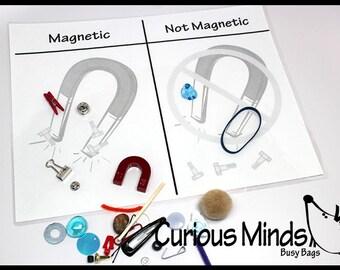 Is it Magnetic   Preschool science Busy bag