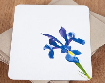 Personalized Note Card Set - Blue Iris - Stationary Set / Iris Stationery Set / Personalized Gift