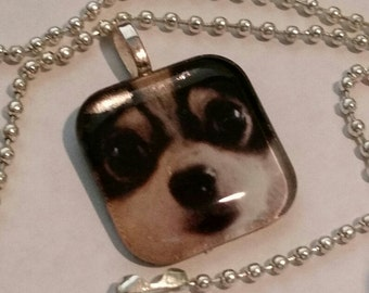Big Eyed Pup  - glass pendant and chain