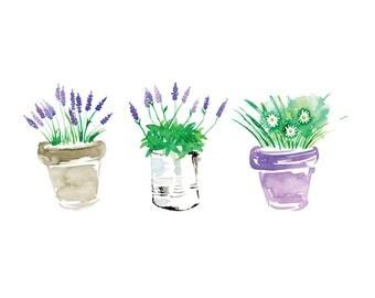Lavender & Daisies watercolor art print