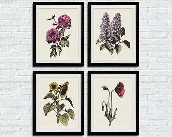 "Vintage Flower Art Print - Set of 4 8""x10"" Print"
