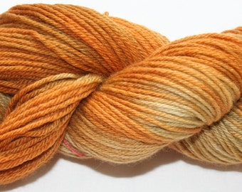 Hand Painted 100% Superwash BFL Wool  DK Weight Yarn (163)