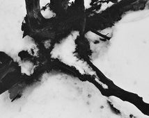 Abstract Photography - Black and White Art Print Modern Rustic Art Winter Photography Cold Film Photography Print : 12x18 print 4x6 8x10