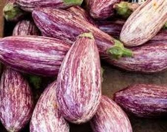 Eggplant seeds,eggplant tigrana,24, Melinzana tigrina  seeds ,tsakoniki melinzana, gardening, summer vegetable