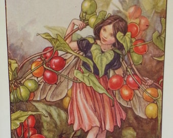 Flower Fairy Mounted  Vintage Print 1930s Black Bryony - CICELY MARY BARKER Flower Fairies Original Print Mounted Ready to Frame.