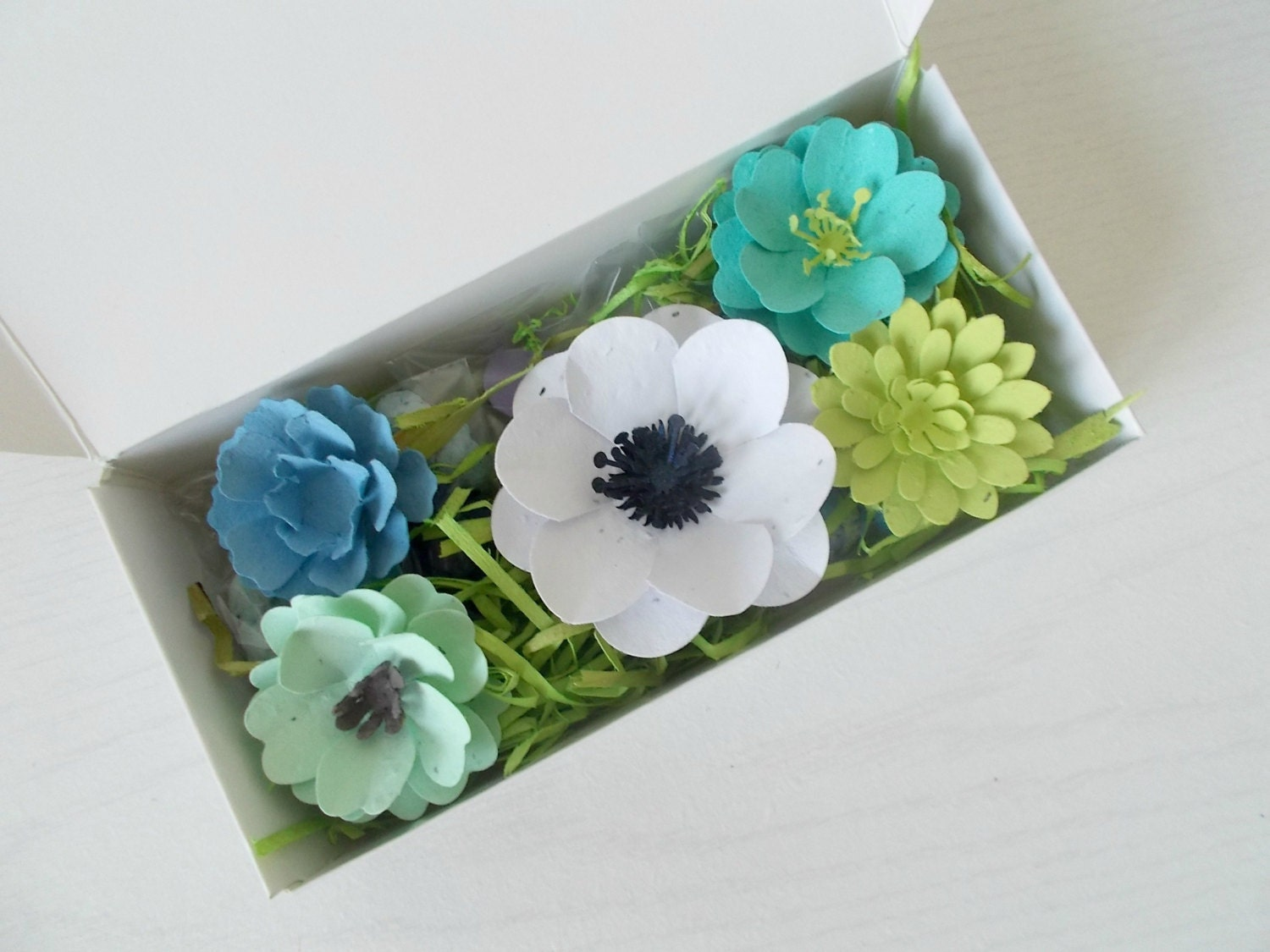 Eco Friendly Plantable Paper Flower and Seed Bomb Gift Set