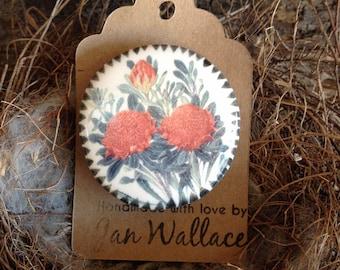 Australian Red Waratah -  Handmade Ceramic Brooch