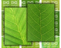 Green Leaves 2.5 x 3.5 ACEO ATC Background Printable Digital Collage Sheet  Gift Tags Hangtags Jewelry Holders Instant Download