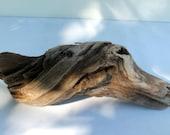 Driftwood Aquarium Terrarium~Craft Supplies~DIY~Genuine Surf Tumbled~Lake Erie~